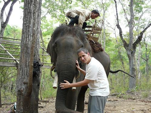Con el elefante