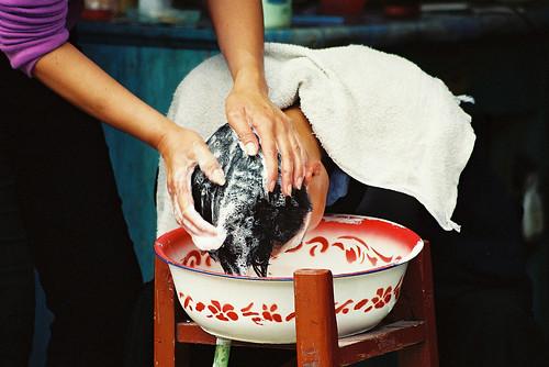 Xijiang washing hair