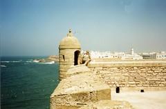 . - (varfolomeev) Tags: sea 2000 morocco