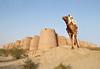 Adventures of a Desert Boy . (Commoner28th) Tags: pakistan boy sky india sahara moving sand desert adventure camel punjab ahmed sindh indus jaisalmer thar multan ivc agha rajhastan waseem cholistan bahawalpur indusvalley indusvalleycivilization commoner28th platinumbestshot platinumpeaceaward mygearandmepremium mygearandmebronze mygearandmesilver mygearandmegold mygearandmeplatinum