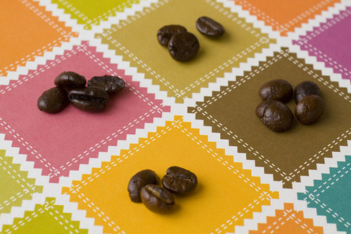 coffee beans on checkered paper