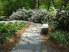 Duke Gardens (zodia81) Tags: flower floral gardens nc durham dukegardens sarahpdukegardens