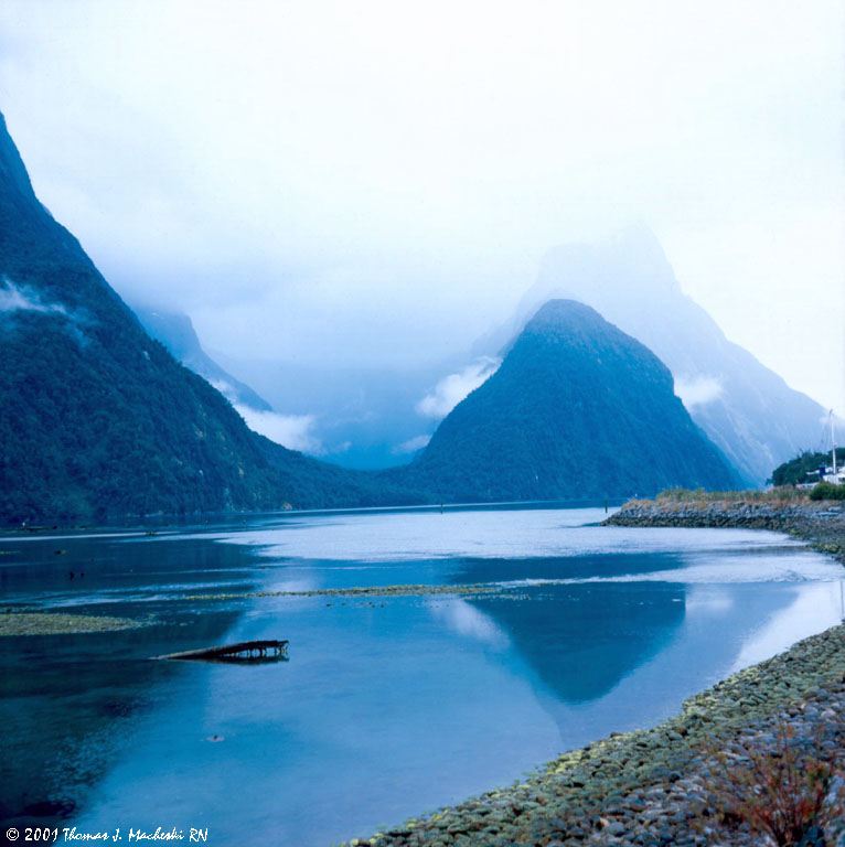Morning On Milford Sound