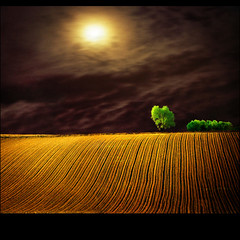 Moon field (Katarina 2353) Tags: landscape nature spring brother memorialday love moon sky clouds cielo trees time sister golden valleys fields light vajdajanos earthday green paysage paisaje bestcapturesaoi artofimages backgrounds wallpapers desktop darkness photopainting iphone background texture patterns dark katarina stefanovic 2353 shadows mygearandmepremium equilibrium joy peace harmony art mygearandmeplatinum mygearandmegold mygearandmesilver mygearandmebronze mygearandmediamond surreal serbiainspired theotherworld tjkp priroda katarina2353 katarinastefanovic photography film flickr image nikon pejza