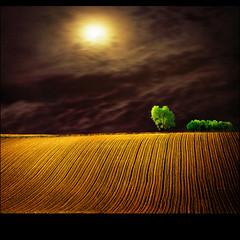 Moon field (Katarina 2353) Tags: trees light sky moon green texture film nature clouds dark landscape photography golden spring nikon shadows darkness image time sister brother patterns surreal paisaje cielo fields paysage priroda valleys photopainting tjkp pejza katarinastefanovic katarina2353 serbiainspired