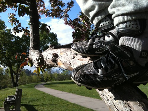 of trees and cleats