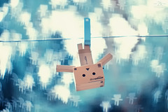 Explored! - You never know when a Danbo would enter your life.. :D (2k Photography) Tags: sea canon toy eos 50mm idea bokeh f14 creative explore kk 2k danbo custombokeh kissx2 ~2|{~ danbokeh pushpdeeppandey danbobokeh
