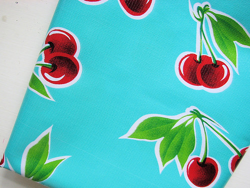 My first oilcloth purchase