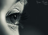 One look... (MIRANDA, Bruno) Tags: eye pb olho pará belém brunomiranda gabrielaamaral