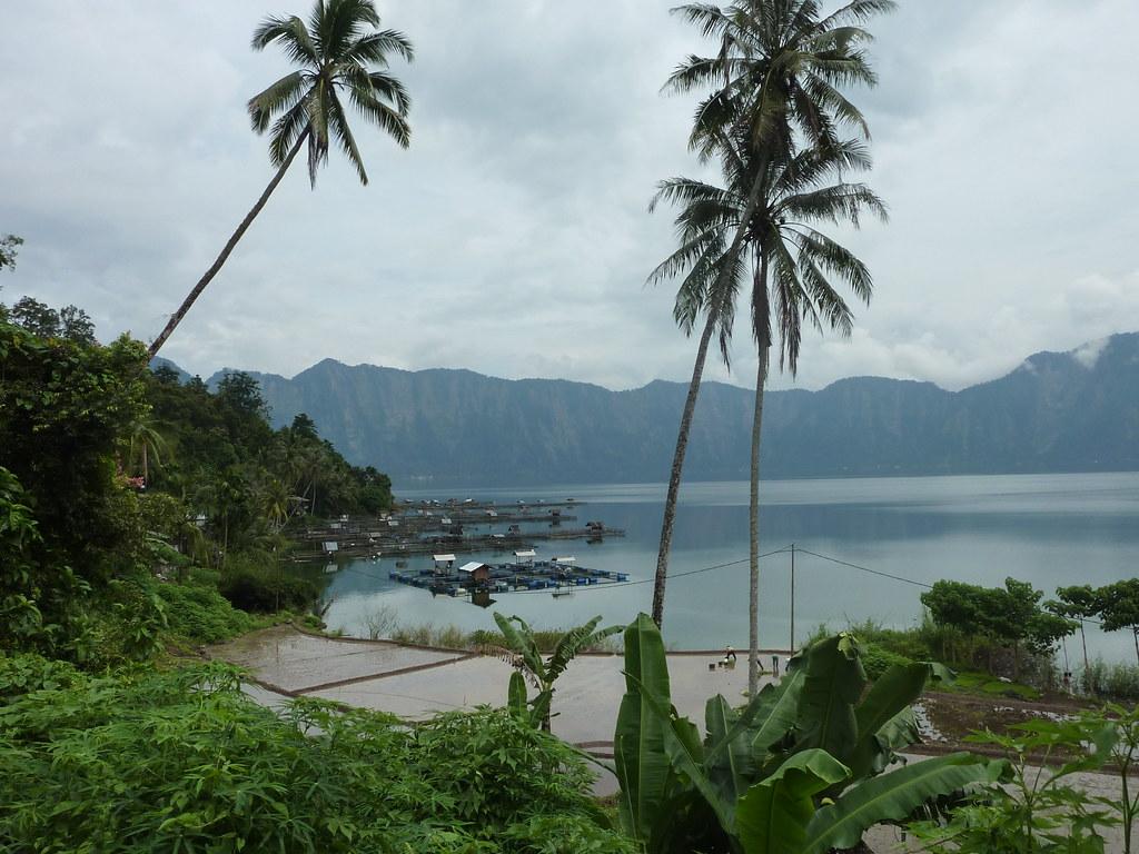 Sumatra-Lac Maninjau (129)