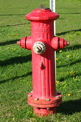 Borne-fontaine / Fire Hydrant (Gerard Donnelly) Tags: hydrant bornefontaine
