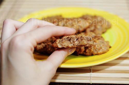 biscuiti3