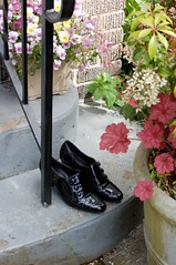 Shiny Shoes on Stoop (TheFullReport) Tags: seattle found shoes volunteerpark capitolhill blackpatent