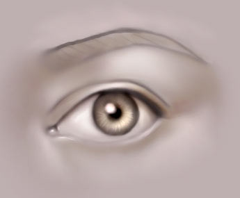 Drawing_the_human_eye