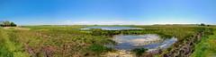 Texel (final) panorama landscape (Matthieu Verhoeven - Photographer -) Tags: blue panorama landscape nikon blauw colours view matthieu uitzicht texel landschap kleur d80
