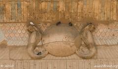 DSC_0854_edited-1 (arx7) Tags: red sea sphinx set temple desert pyramid dam muslim islam sadat prayer tomb egypt mosque nile moses cairo camel oasis mohammed valley pharaoh sarcophagus horus mummy ankh karnak aswan luxor isis ramses tut osiris allah thebes hieroglyphics tutankhamen nasser scarab hieroglyph nubian burkah felucca anant gamel raut anantrautorg rautorg