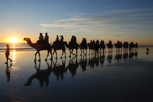 DSC_0367 Cable beach, Broome, first importing port of camels in Australia