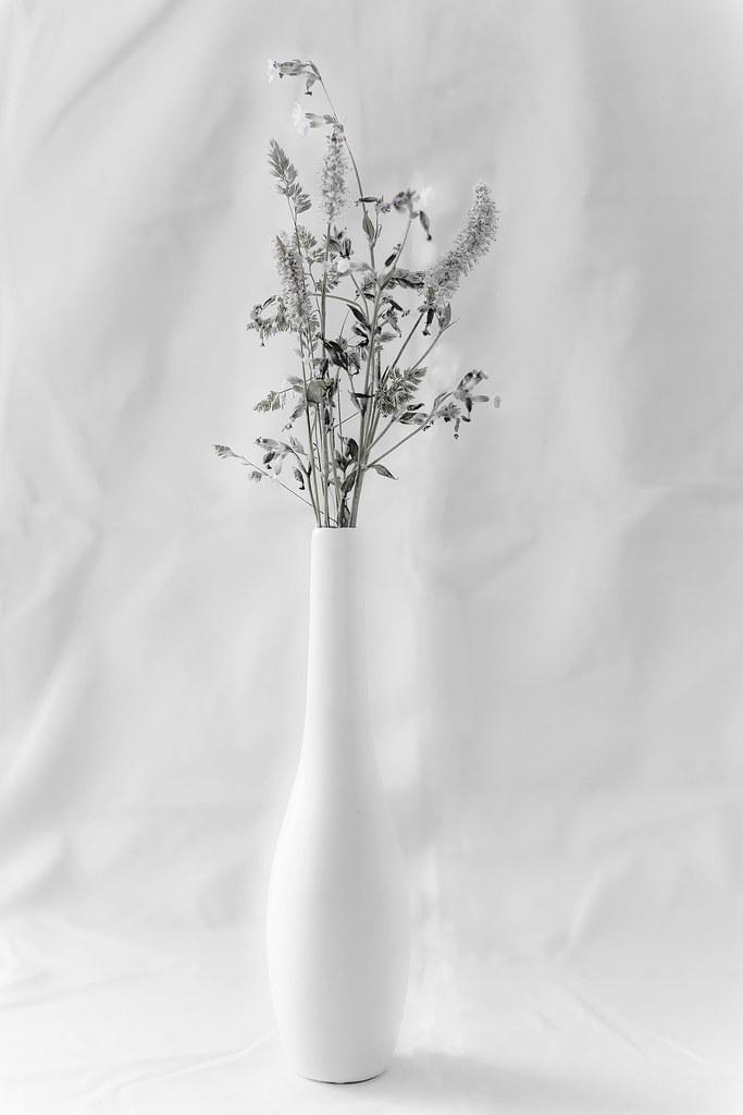 Flower Still Life Study (2)