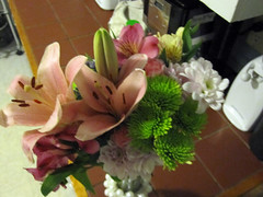 gradGifts04 (mary2678) Tags: flowers burlington university vermont graduation class gift vt uvm 2010 undergraduate