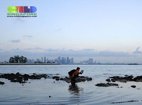 Kusu Island with city skyline