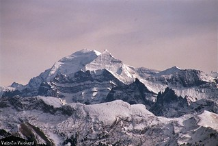 17A_00127 Alpes bernoises - Berner Alps in Switzerland