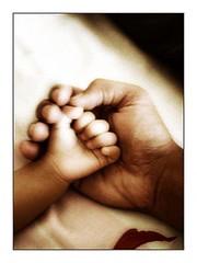 _wsb_299x399_father
