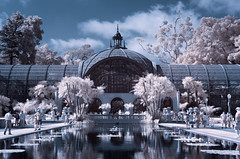 Balboa Park, Infrared (x-ray tech) Tags: blue red color reflection pool spectacular ir interestingness cool nice interesting fantastic different sandiego unique awesome historic special explore swap infrared modified converted unusual botanicalgardens extraordinary balboapark canonefs1755mmf28isusm canoneosrebelxti tripleniceshot mygearandmegold tplringexcellence