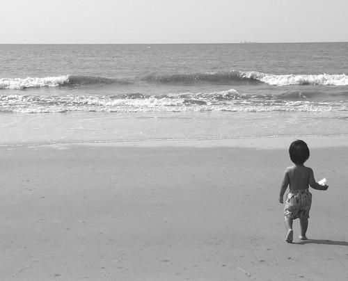 beach hilton head 7