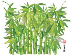 Bamboo (Vector) (crayonmonkey) Tags: green grass leaves japanese chinese bamboo study adobe illustrator vector crayonmonkey