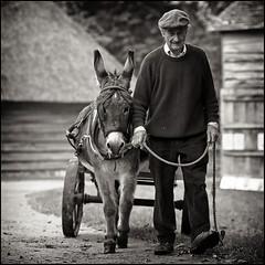 A Little Donkey (strussler) Tags: england bw monochrome museum canon eos westsussex donkey nb sw singleton wealdanddownland ef135f2l infinestyle simplysuperb silverefexpro 5dmkii dontforgetneda leuropepittoresque