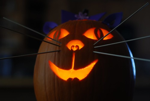 Kitty-o-lantern