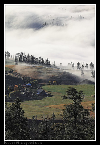 Fog above the Ranch
