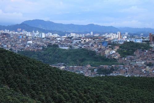 The city Pereira and coffe plantations