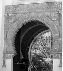 Puerta al Patio de los Naranjos-Catedral de Sevilla. (lameato feliz) Tags: puerta sevilla