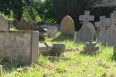 2017-052638 (bubbahop) Tags: 2017 europetrip34 england uk unitedkingdom greatbritain exeter stdavids cemetery tombstones graves