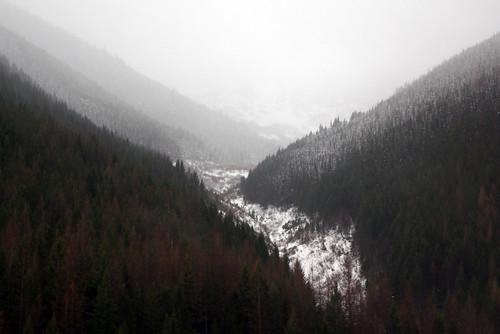 Glacier National Park II