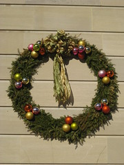 US Botanic Garden wreath (thomas pix) Tags: christmas xmas dc washington eyefi