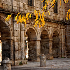A fines del otoo (George Nutulescu) Tags: madrid travel autumn color fall colors leaf spain branch columns rusty arches espana passage elescorial topseven nikond40 flickraward nikonflickraward artistictreasurechest sailsevenseas coppercloudsilvernsun