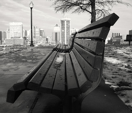 Federal Hill Bench
