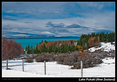 Lake Pukaki (New Zealand) (Juan C Ruiz) Tags: new blue trees winter white lake snow water rock lago arboles nieve cook glacier zealand nz flour glaciar pukaki peyto turquesa