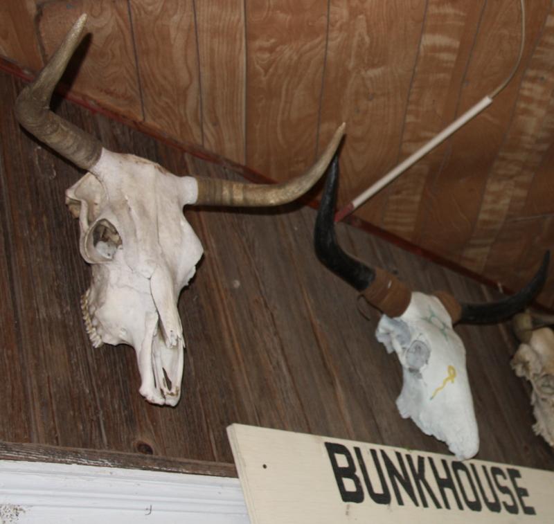 Bunkhouse Pair