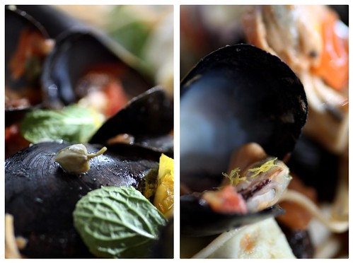 Levant Steamed Mussels duo