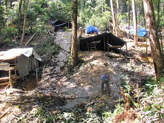 Illegal miner huts (Mangiwau) Tags: green sumatra indonesia banda aloe mercury kali air traditional mining illegal saya gunung aceh mane hijau emas anak sungai perak peti masyarakat meulaboh raksa penambangan sigli pidie atjeh alue tutut aneuk izin tanpa geumpang woyla eumpeuk merkuri ujoen