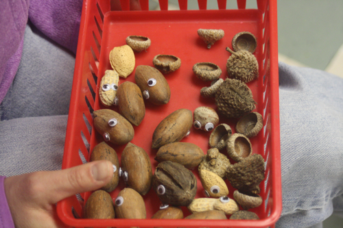 nut buddies
