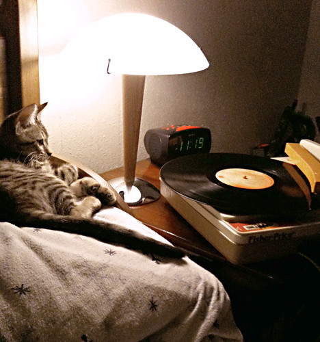 Chill'n With Vinyl
