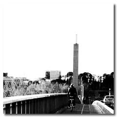 when I look (Sam Ilić) Tags: bridge white lake black canon australia canberra 450d commonwealthavenuebridge canon24105mm4