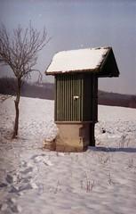 egyel kevesebb van neki (.e.e.e.) Tags: film nature analog hungary village iso400 mf analogue manualfocus filmscan russiancamera helios44 baranya m39 zenit3m müllerfoto mohácsszőlőhegy
