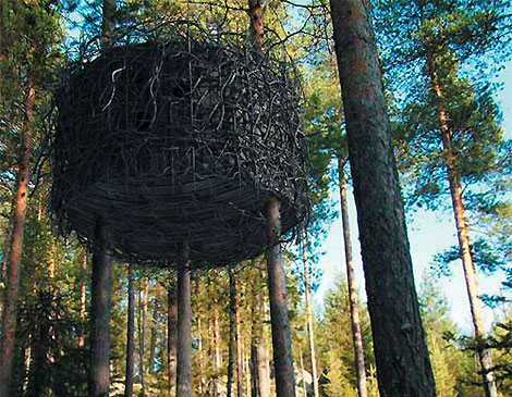 4327990260 86a09f3aff o The Tree Hotel and Other Swinging Spots