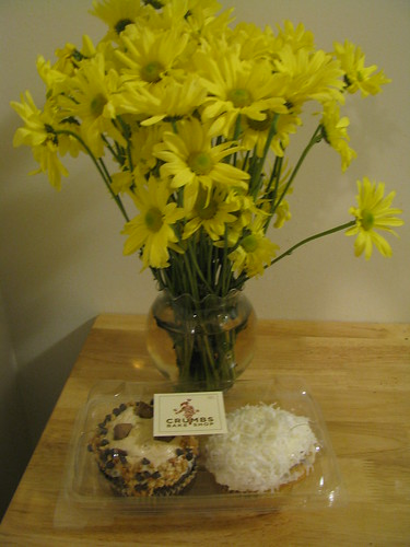 crumbs-cupcakes