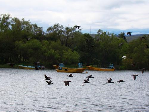 En el Cañón del Sumidero (5)